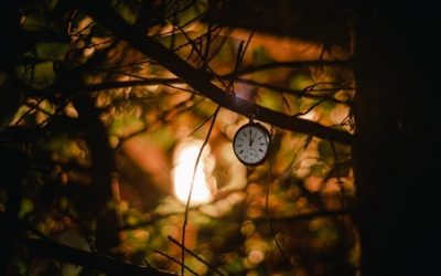 Meditation & Reflection Healing Our Relationship With Time Through Patience
